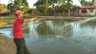 Projeto investe na criação de peixes