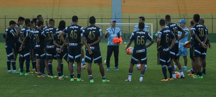 Palmeiras treino (Foto: Cesar Greco / Ag. Palmeiras / Divulgação)