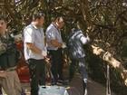 Homem morre após levar tijoladas e ser jogado de barranco em Varginha