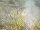 Bombeiros registram mais de 120 queimadas em Juiz de Fora em 2016