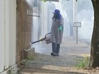 Secretaria de Saúde de Bauru faz ações contra o Aedes aegypti
