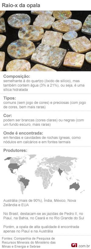Raio X da Opala (Foto: Editoria de Arte/G1)