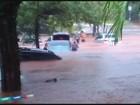 Temporal alaga campus da Unicamp e deixa carros quase submersos; vídeo