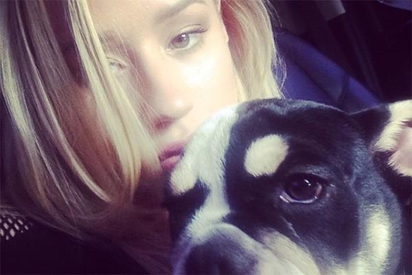 """Boa parte das fotos do Instagram de Iggy Azalea são de sua cachorrinha. """"O nome dela é Shrinkabull Jam Don't Shake Like That Jelli, mas vocês podem chamá-la de Jelli"""", escreveu a rapper. (Foto: Reprodução/Instagram)"""