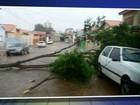 Itapetininga tem chuva de granizo, queda de árvores e de energia