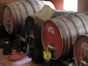 Vinícolas estão por toda parte em Caldas e Pocinhos do Rio Verde (Foto: Jéssica Balbino/ G1)