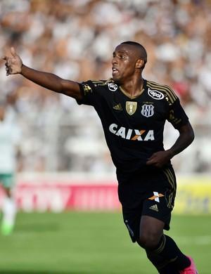 Ponte Preta x Palmeiras Paulistão Jeferson (Foto: Marcos Ribolli)