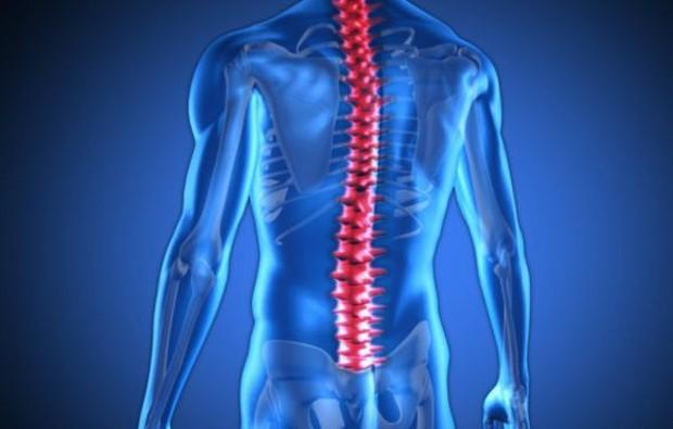 Cientistas americanos dizem ter desenvolvido uma droga que pode incentivar os nervos na medula espinhal a crescer e reparar lesões (Foto: Thinkstock)