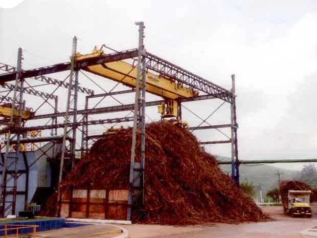 9b76911920af3 G1 - Pernambuco reativa três usinas e gera 12 mil empregos em plena ...