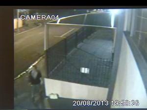 Vídeo mostra suspeita de roubo de bebê em shopping de Santa Bárbara (Foto: Reprodução)