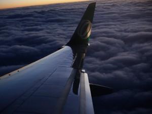 Aeronave da Gol (Foto: Reuters)