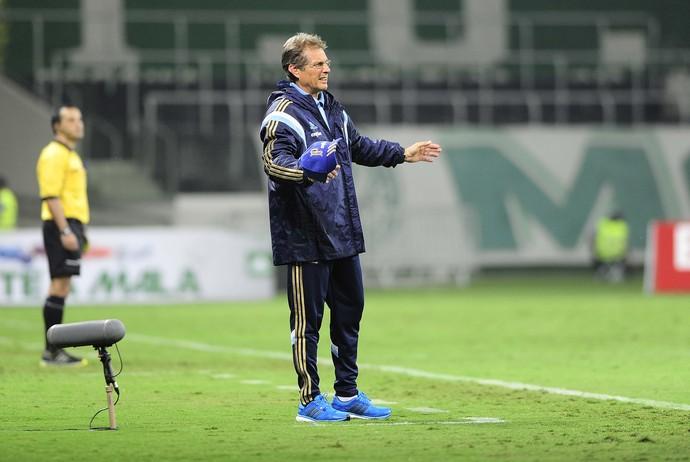 Oswaldo de Oliveira Palmeiras x Bragantino (Foto: Marcos Ribolli)