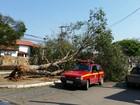 Após chuva forte, unidade do Sesc em Lavras suspende atividades