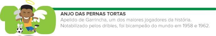 Glossário funinfo 01 ANJO DE PERNAS TORTAS (Foto: infoesporte)