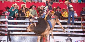 Em touros e cavalos, as provas do rodeio são de tirar o fôlego (Adilson Silva/FotoPerigo)