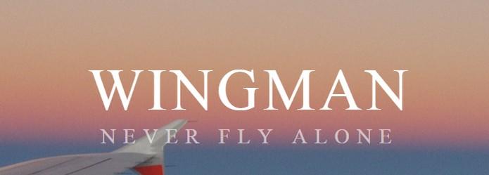 Wingman encontra pessoas no mesmo voo de avião  (Foto: Reprodução/Wingman)