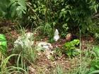 Suspeito de matar fazendeiro de Alvorada é preso pela polícia