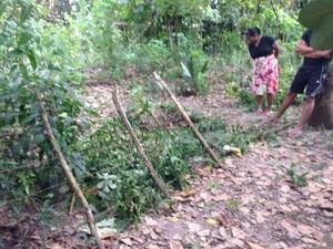 Menina foi encontrada em matagal próximo à casa dos pais (Foto: Divulgação)