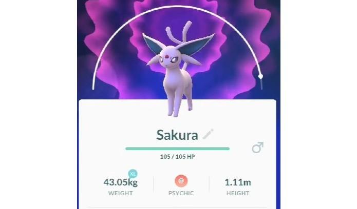 Em Pokémon GO, nomear um Eevee como Sakura força a evolução para Espeon (Foto: Reprodução/Felipe Demartini) (Foto: Em Pokémon GO, nomear um Eevee como Sakura força a evolução para Espeon (Foto: Reprodução/Felipe Demartini))