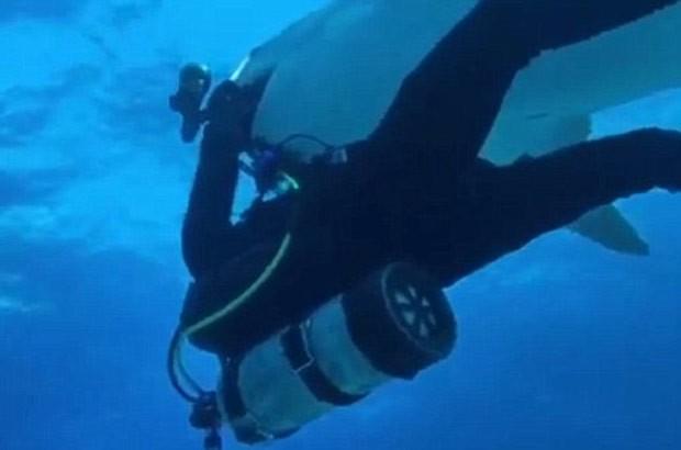 Mergulhador ainda tentou impedir que o tubarão fuja com seu equipamento, mas acabou desistindo (Foto: Reprodução/YouTube/Paul and Young Ron)