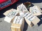 Surfista é preso com mais de 600 tubos de lança-perfume em SP
