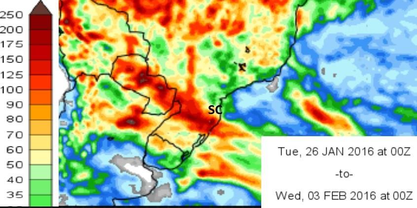 Chuva está prevista até o dia 3 de fevereiro (Foto: IGEF/Cola)