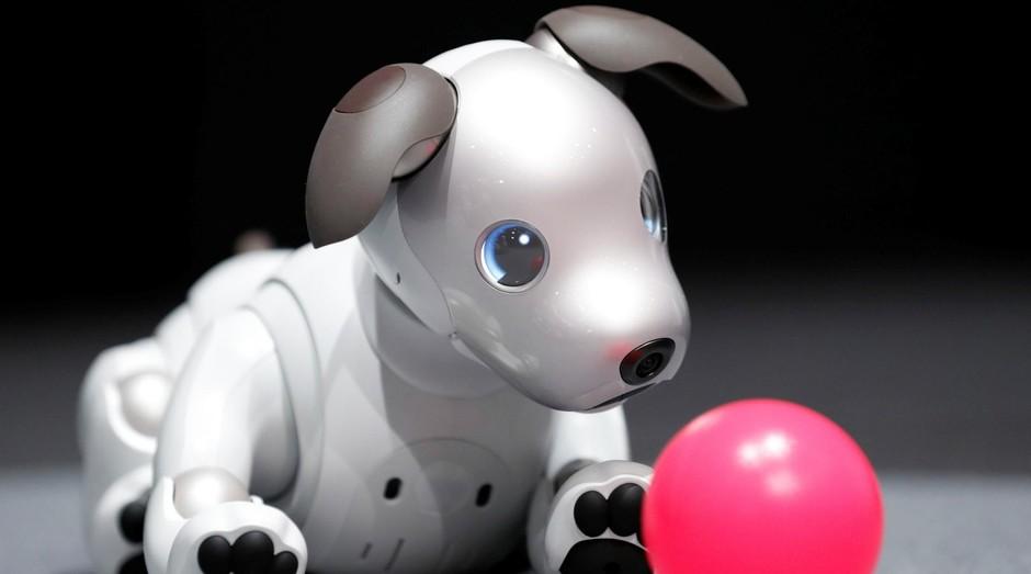 Aibo, Sony, robô, cachorro (Foto: Divulgação)