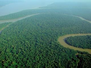 Amazônia (Foto: Lubasi/Wikimedia)