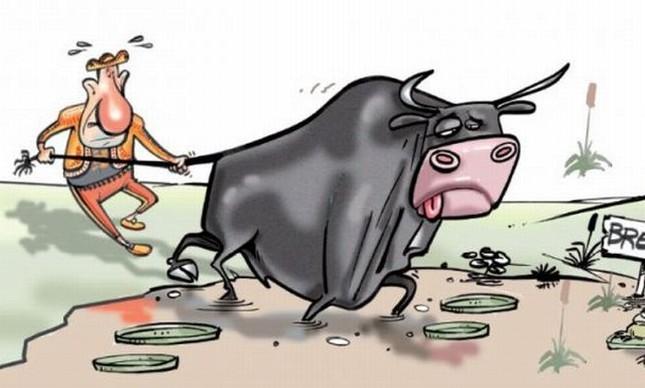 A vaca foi pro brevo (Foto: Arquivo Google)
