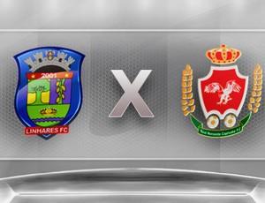 Campeonato Capixaba 2012: Linhares x Real Noroeste (Foto: Globoesporte.com)
