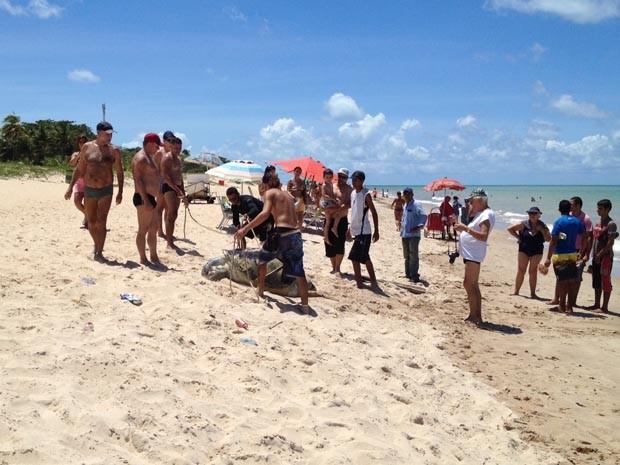 Uma tartaruga marinha foi encontrada por moradores da Praia Tambaú, em João Pessoa, na manhã desta sexta-feira (5). De acordo com testemunhas, o animal estava com um corte profundo em seu casco. As pessoas que a encontraram perceberam que ela já estava em estado de decomposição avançada e resolveram enterrá-la. (Foto: Walter Paparazzo/G1)
