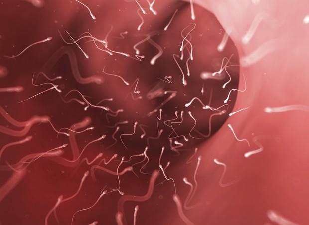 Óvulo rodeado por espermatozoides (Foto: Thinkstock)