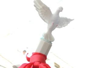 Símbolo de devoção, pomba branca estava presente nas bandeiras do Divino. (Foto: Jenifer Carpani/G1)