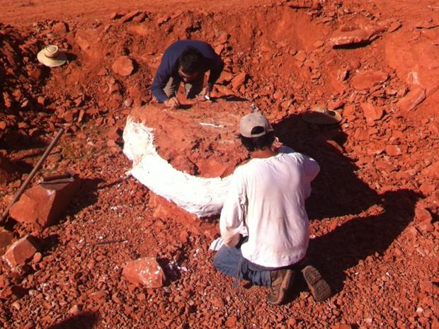 Fósssil de dinossauro foi encontrado no RS (Foto: Manoel Carlos Vicente/RBS TV)
