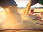 Das lavouras ao porto, safra de soja percorre 600 km em estradas do RS