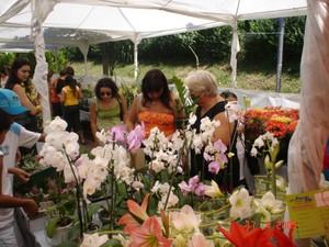 Feira Expo Verde e Flor Divinópolis (Foto: Expo Verde e Flor/ Divulgação )