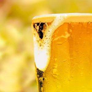 Dá para aprender a gostar de cerveja? (William Perugini/Shutterstock)