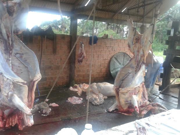 Abatedouro ficava em uma chácara e não atendia às mínimas condições de higiene  (Foto: Divulgação/PM-TO)