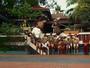 Jogos do Mundo: Na Índia, Kalari é arte marcial inspirada nos animais