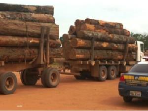 Parte da madeira apreendida pela PRF em Roraima e Amazonas (Foto: arquivo: Polícia Rodoviária Federal)