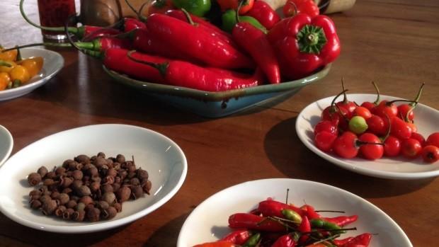 Programa vai falar sobre os benefícios da pimenta (Foto: Vera Bonfante/RBS TV)