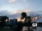 Pôr do sol encanta turistas no Parque das Nações Indígenas, em MS; vídeo