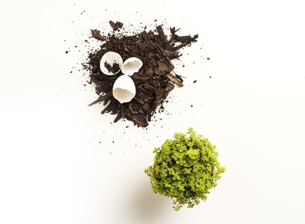 cascas-de-ovos-adubo-natural-vasos-terra-jardinagem-foto-iara-venanzi.jpg (Foto: Iara Venanzi/Editora Globo)