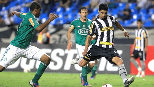 Renato, Botafogo x Palmeiras (Foto: Agência EFE)