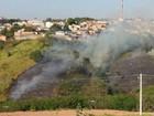 Incêndio destrói grande área de vegetação e mobiliza bombeiros