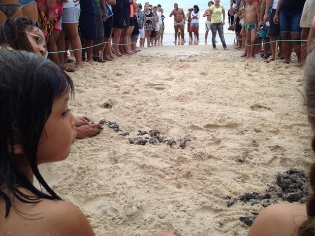 Soltura chamou a atenção de dezenas de pessoas que passavam pelo local (Foto: Luis Bezerra/Inter TV Cabugi)