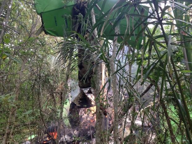 Avião de pequeno porte cai em fazenda de Júnior Friboi, em Nazário, Goiás 3 (Foto: Arquivo pessoal/Ney Xavier Gomes)