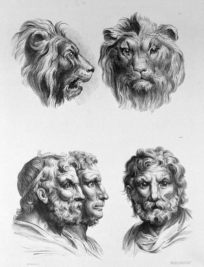 Leão (Foto: Reprodução)