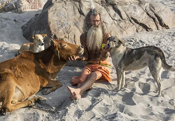 O sadhu (homem santo) Babajay trocou Los Angeles por Rishikesh para viver ao lado dos animais e longe do mundo material (Foto: © Haroldo Castro/Época)