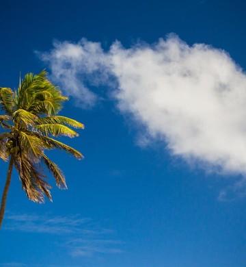 Férias ; Ilhas Maldivas ; turismo ; viagem ; descansar ; desestressar ; relaxar ; esquecer do trabalho ; praia ;  (Foto: Pexels)